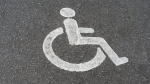 handicap_1.jpg